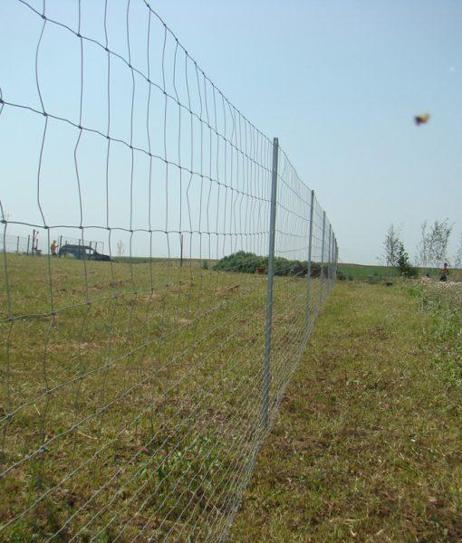 Galvafield - plasa innodata pentru gard