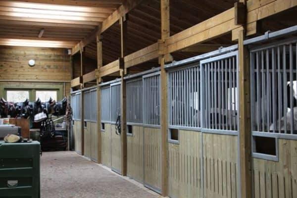 Edenland Grajd pentru cai