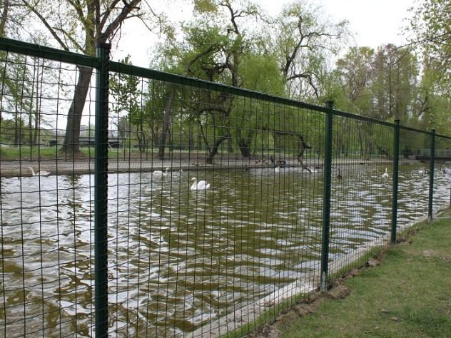 Parc Bucuresti 3